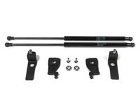 Амортизаторы капота RIVAL (опоры) для Volkswagen Tiguan  2,0TSI; 2,0TDI 2011-2016 (2A.ST.5802.1)