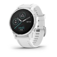 Спортивные часы Garmin Fenix 6S Silver with White Band (010-02159-00)